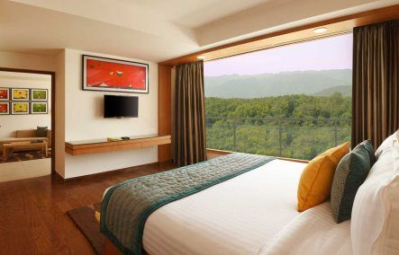 Dehradun Hotels - Executive Suite