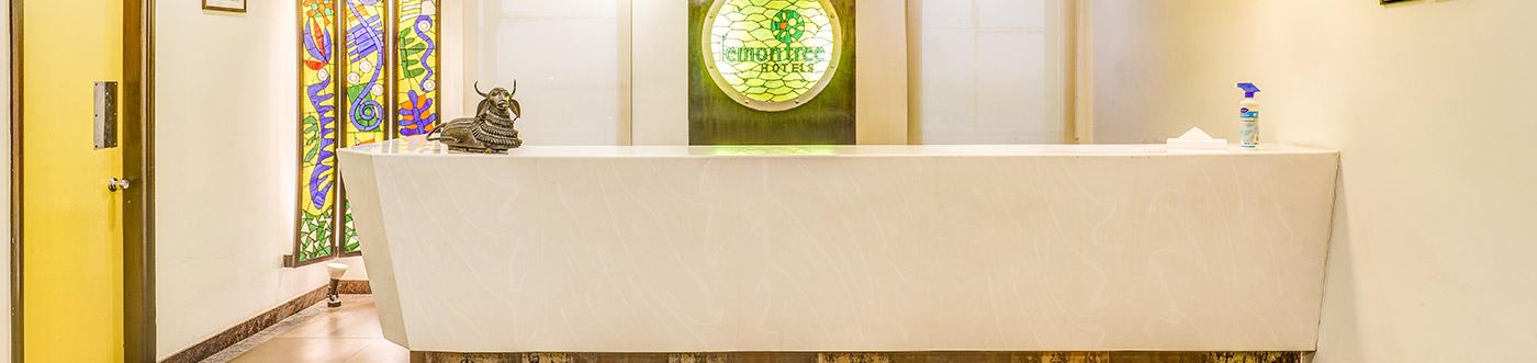 Hotel Near Anand Vihar Akshardham Amp Laxmi Nagar Lemon